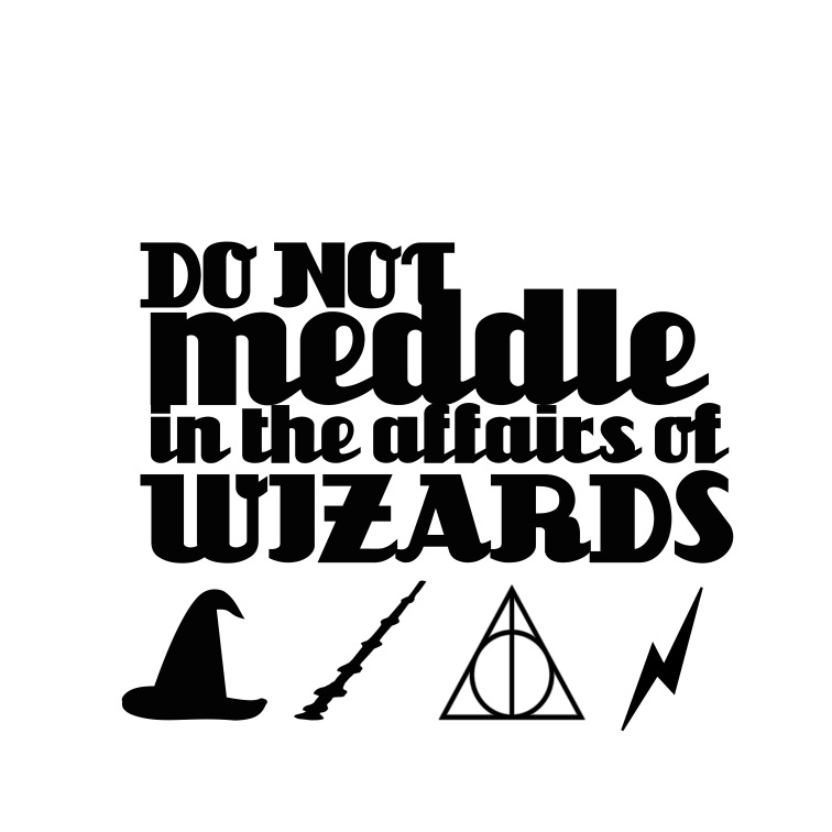 Do Not Meddle in The Affairs of Wizards
